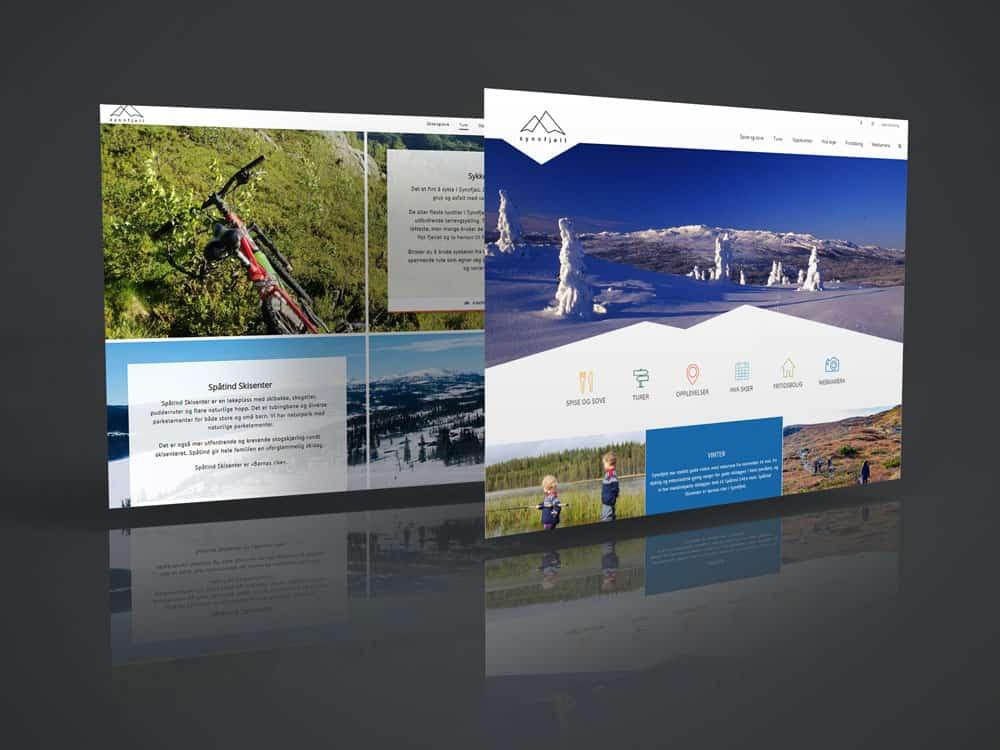 Visit Synnfjell, logo og nettside